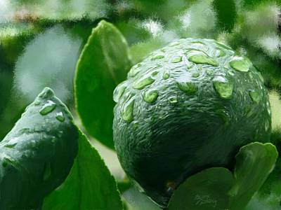 Lemon Drops Painting - Meyor Lemon by Bruce Nutting