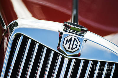 Automobile Hood Photograph - Mg Tf 1500 Vintage Car  by Tim Gainey