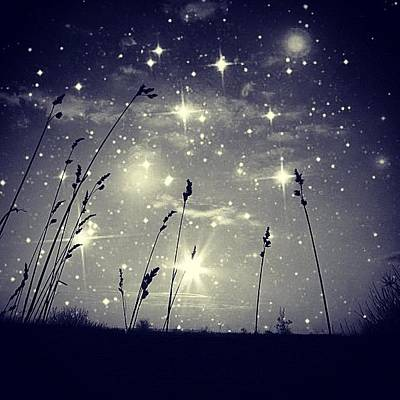 Star Photograph - #mgmarts #mysky #wish #life #simple by Marianna Mills