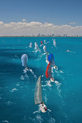 Miami Beach Regatta Art Print by Steven Lapkin