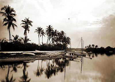 Miami Drawing - Miami River Evening, Waterfronts, Palms, Sunrises & by Litz Collection