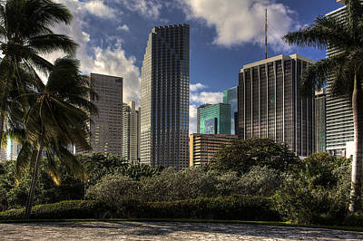 Photograph - Miami Skyscrapers by William Wetmore