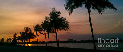 Photograph - Miami Sunset by Charlie Cliques