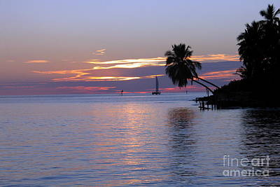 Art Print featuring the photograph Miami Sunset by Shelia Kempf