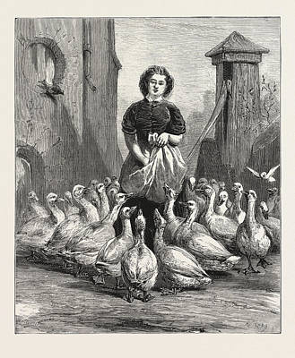 Michaelmas Geese,  The Last Meal Art Print by English School