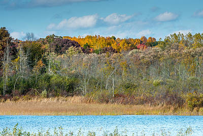 Photograph - Michigan Fall by Paul Johnson