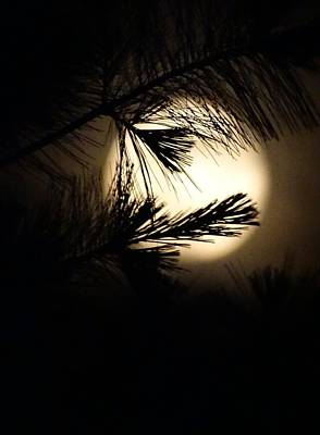 Photograph - Michigan Moonrise by Sandra Strohschein