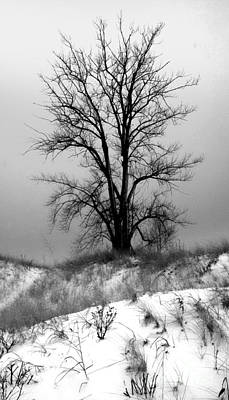 Photograph - Michigan Snow by Gregory Dyer