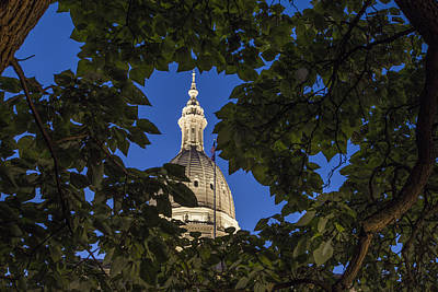Photograph - Michigan State Capitol And Tree by John McGraw