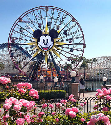 Photograph - Mickey's Fun Wheel by Doug Kreuger