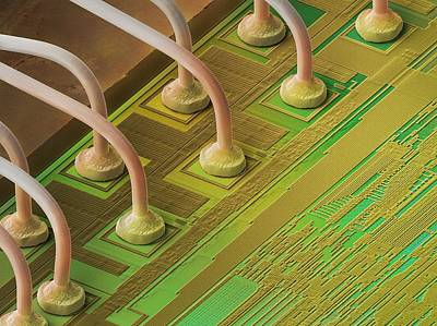 Processor Photograph - Microchip Connectors, Sem by Power And Syred