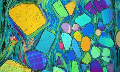 Art And Geology Original