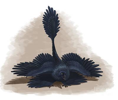 Microraptor Digital Art - Microraptor Gui Spreads Its Four Wings by Emily Willoughby