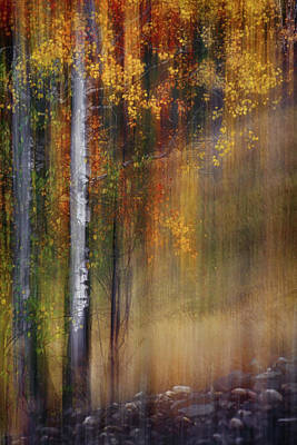 British Columbia Photograph - Mid-october by Ursula Abresch