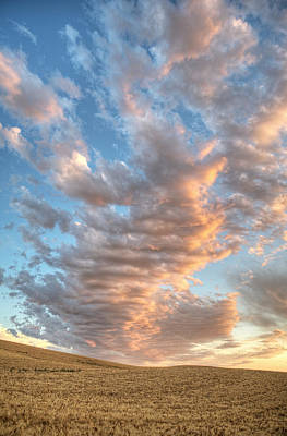 Photograph - Mid Palouse August by Doug Davidson
