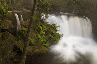 Photograph - Middle Falls by Sonya Lang