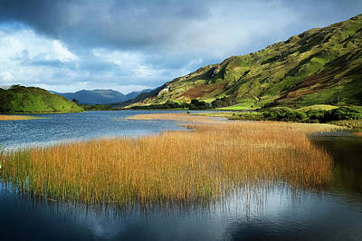 Photograph - Middle Lake Kylemore In Irelands by Chris Hill