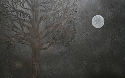 Midnight Calm Art Print by Drew Shourd