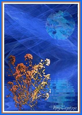 Digital Art - Midnight Flowers by Ray Tapajna