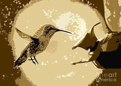Photograph - Midnight Hummingbird by Carol Groenen