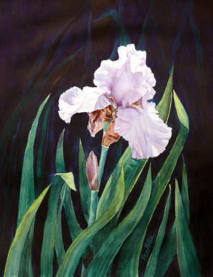 Painting - Midnight Iris by Karen Mattson