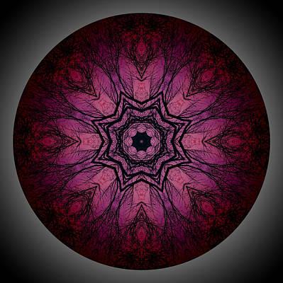 Photograph - Midnight Mandala 1 by Beth Sawickie