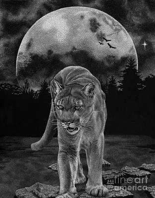 Drawing - Midnight Patrol by Sheryl Unwin