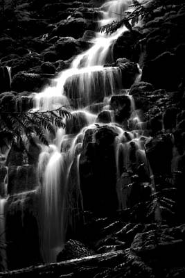 Photograph - Midnight Proxy Falls by Wes and Dotty Weber