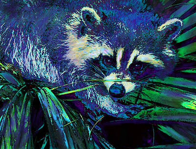 Midnight Racoon Art Print