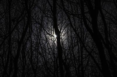 Photograph - Midnight Rambling by Nick Field