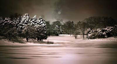 Snow Covered Trees Digital Art - Midnight Stillness by Julie Palencia