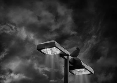 Street Lamps Digital Art - Midnight Street Light by Bill Tiepelman