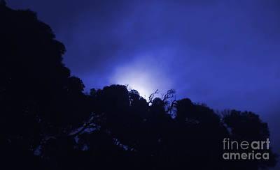 Photograph - Midnight Sun by Amanda Holmes Tzafrir