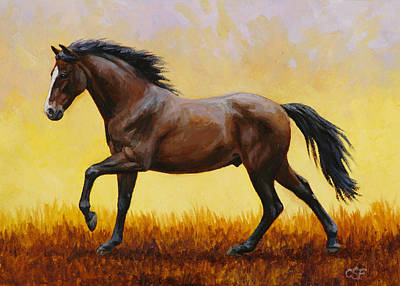 Wild Horse Painting - Midnight Sun by Crista Forest