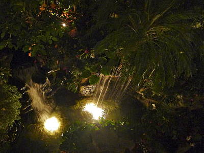 Photograph - Midnight Waterfalls by Denise Mazzocco