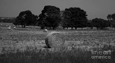 Photograph - Midsummer Hay Bales by Amanda Holmes Tzafrir