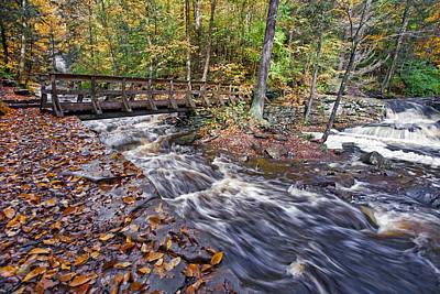 Pretty Photograph - Where The Water Meets At Ricketts Glen by Marcia Colelli