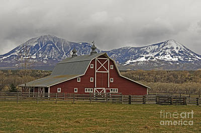 Photograph - Midway Ranch Barn by Kelly Black