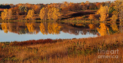 Photograph - Midwest Fall by Elizabeth Winter