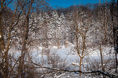 Photograph - Midwinter Snowscape by Gene Sherrill