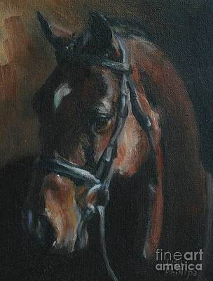 Horse Painting - Miko by Lisa Phillips Owens