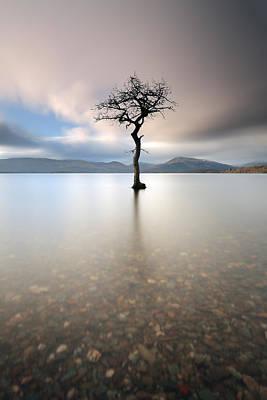 Photograph - Milarrochy Bay by Grant Glendinning