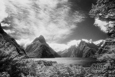 Photograph - Milford Sound Fiordland I by Colin and Linda McKie