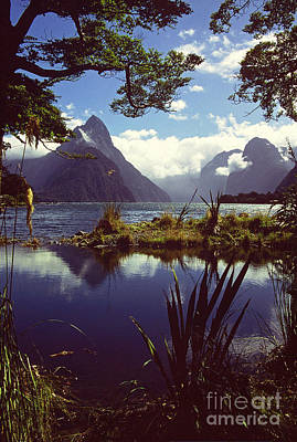 Milford Sound In New Zealand's Fiordland National Park Art Print by Alex Cassels