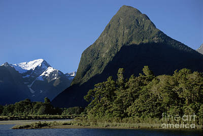 Photograph - Milford Sound New Zealand by Craig Lovell