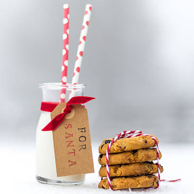 Photograph - Milk And Cookies For Santa by Aldona Pivoriene