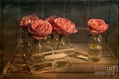 Milk Bottle Roses Art Print by Ann Garrett