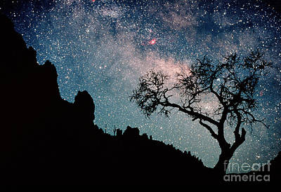 Photograph - Milky Way by Frank Zullo