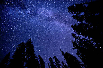 Photograph - Milky Way by Lynn Midford Photography