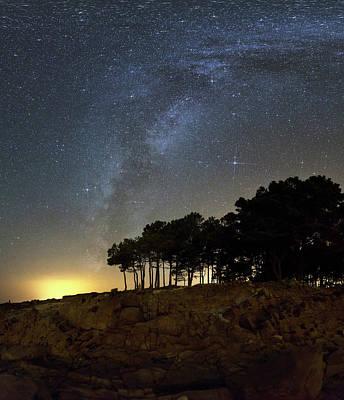 Milky Way Over Coastal Trees Art Print